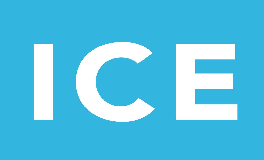 Ice Armband Sverige